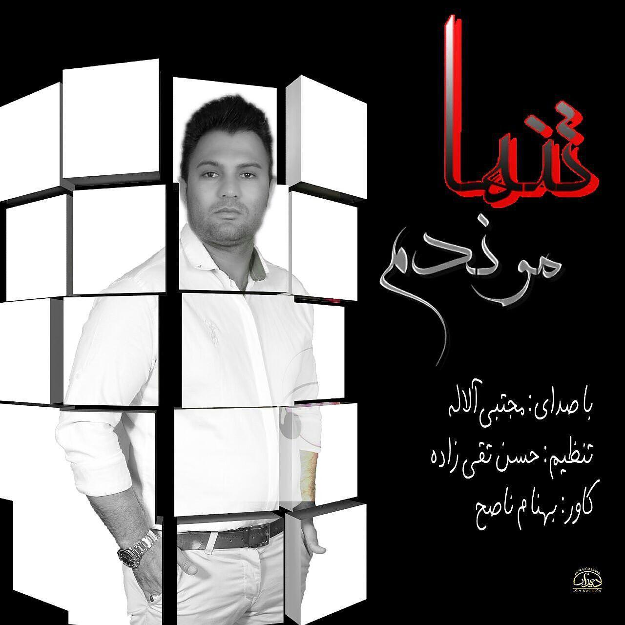 آهنگ جدید از مجتبی الاله به نام تنها موندم (فارسی)