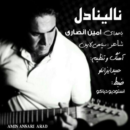 اولین آهنگ کرمانجی به سبک راک با صدای امین انصاری به نام نالینا دل