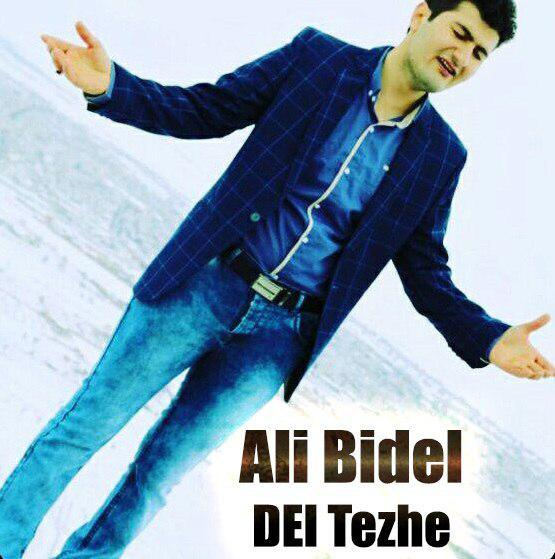 اجرای آهنگ زیبای دل تژه از  علی بیدل در روستای (دالنجان کردیه)